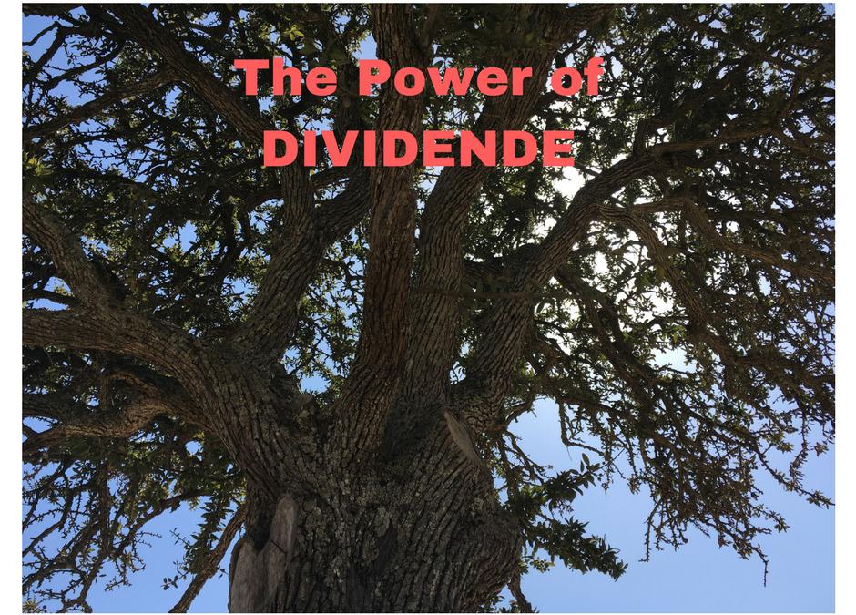 The Power of Dividende: Kurssteigerung und Dividende sind wichtig